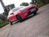 Markos roter Ford Puma